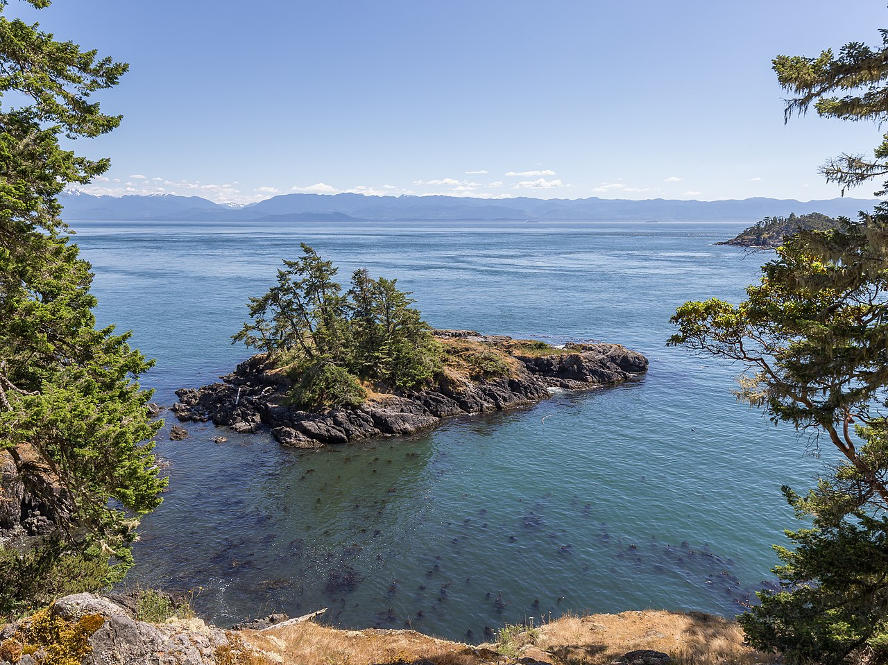 https://commons.wikimedia.org/wiki/File:A_small_island_off_the_coast_of_East_Sooke_Regional_Park,_British_Columbia,_Canada_21.jpg